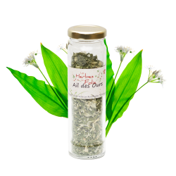 Aromate ail des ours